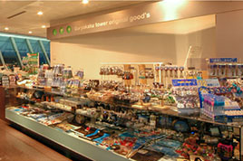 Observation Gift Shop