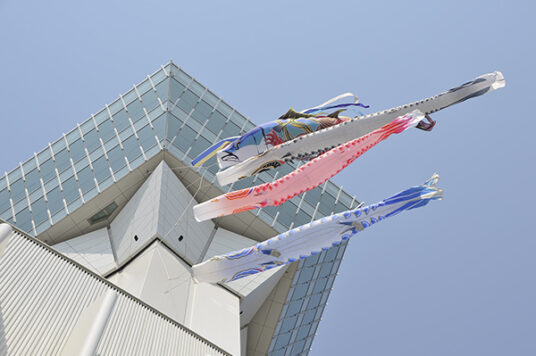 Large koi-nobori windsocks are set up at the Goryokaku Tower.