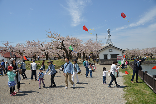 Hakodate Children's Day: Parents & Kids Kite Making and Kite Flying Festival